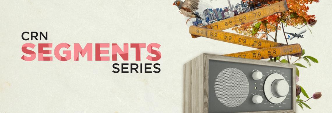 CRN Segments Series 3